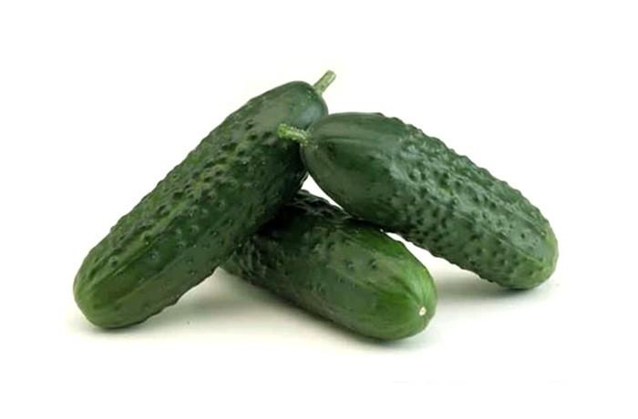 Spanish cucumber